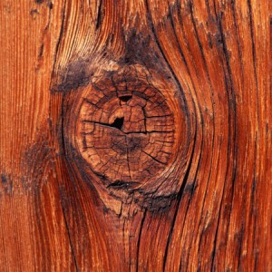 600_vista-wallpaper-knot-in-the-wood