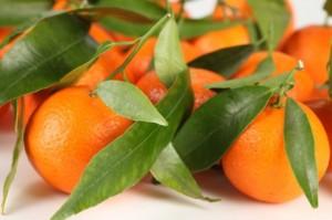 folha-verde--tangerina--alimentacao-saudavel--frutas_3312261