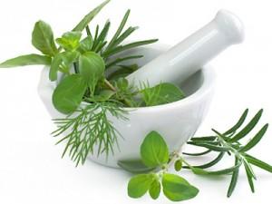 herbal1